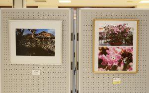 2016.11.29.-12.10.ギャラリーちばな『うるま市文化協会写真部展』_02