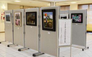 2016.11.29.-12.10.ギャラリーちばな『うるま市文化協会写真部展』_01